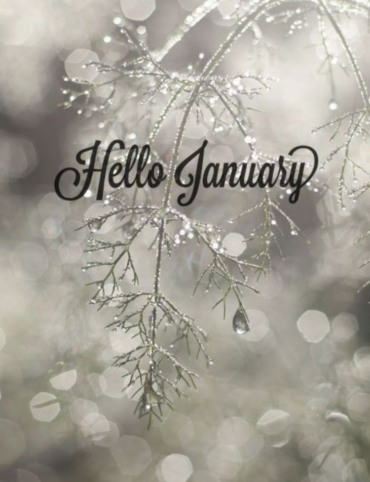 Hello January #hellonovember Hello January